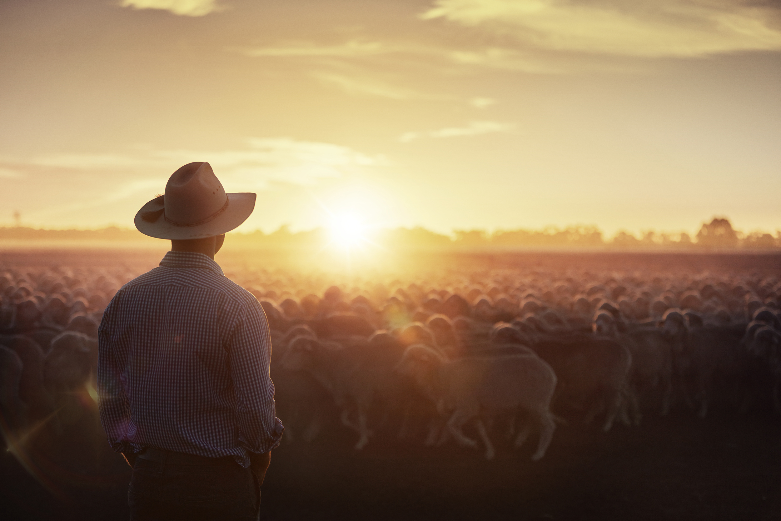 farmers-thom-rigney-professional-photographer-bayer-campaign-advertising-australia-006